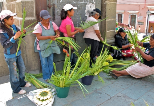 Palm frond weaving gals