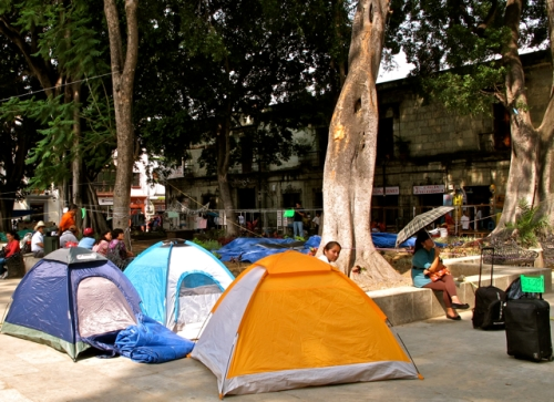 3 tents under the Indian Laurel trees on the Alameda