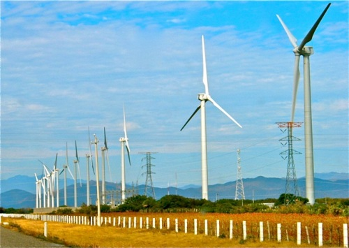Wind turbines along the highway on the Isthmus of Tehuantepec