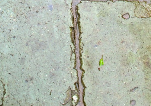 Cantera sidewalk