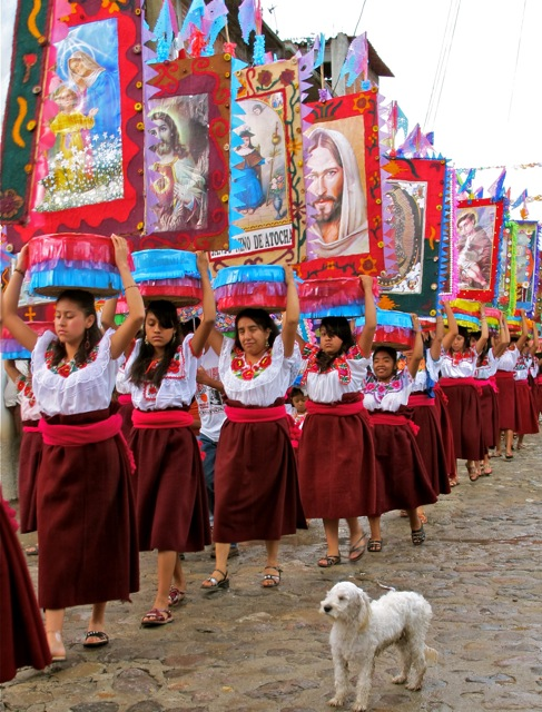 Procession of young Zapotec women carrying canastas on their heads while a little white dog watches