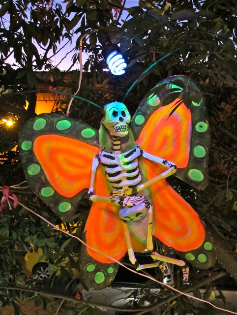 Day-glo orange butterfly skeleton hanging in a tree.