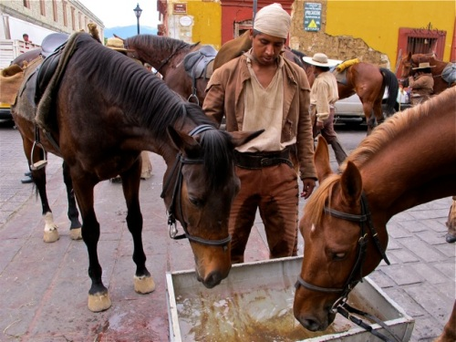 Independence fighter in between two horses drinking water from a trough