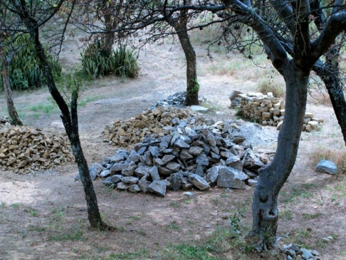 Piles of stones under trees