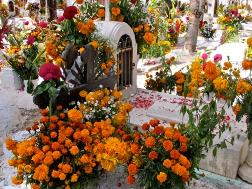 Multicolored flowers surrounding a grave