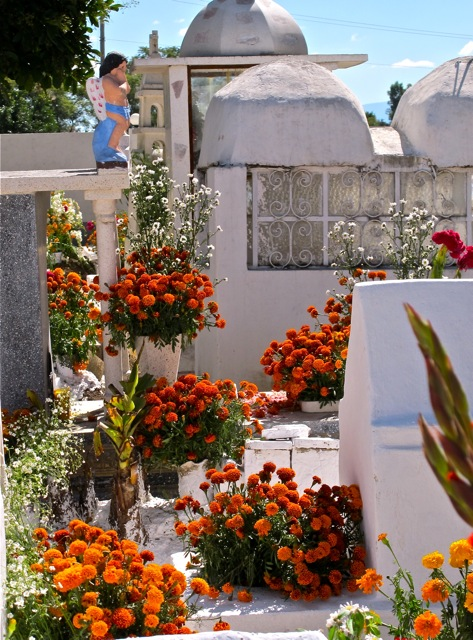 Multicolored flowers surrounding whitewashed tomb