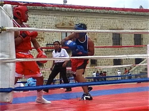 2 boxers in boxing ring with referee in background.