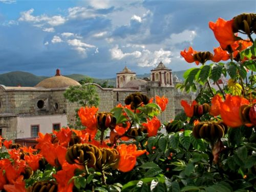 African Red-orange blossoms of African tulip tree in foreground, San Jose church bell towers, and cloud dotted blue sky in background.