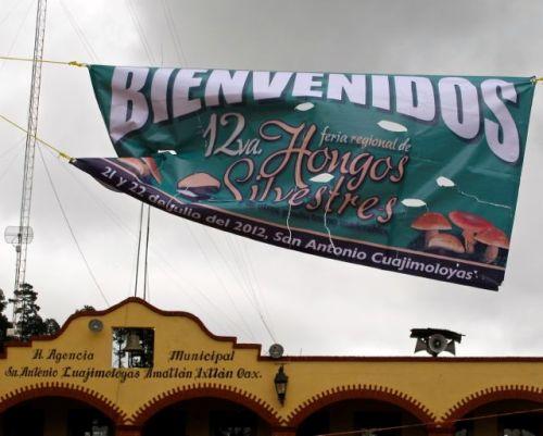 "Banner above municipal building, against a cloudy sky, announcing, ""Bienvenidos,12va. feria regional de Hongos Silvestres"""
