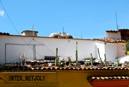 Wire and cactus on tile roof of INTER_NETJOLY
