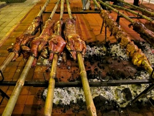 Roasting pigs on bamboo skewers over hot coals.