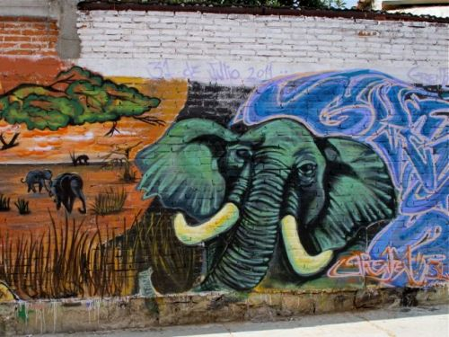 Savannah scene, with elephant in foreground, painted on wall.