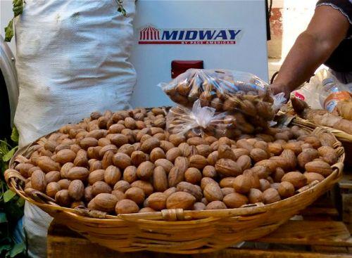 Wheelbarrow full of nuts
