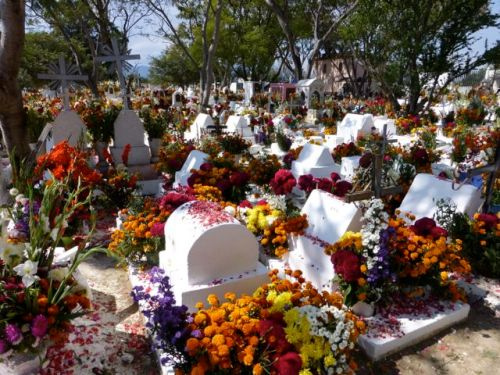 Whitewashed graves covered with multicolored fresh flowers