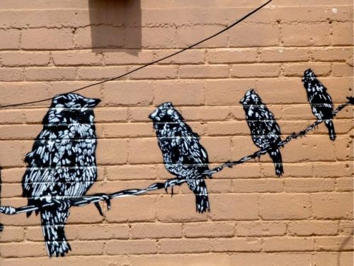 Wall with painting of birds sitting on a wire