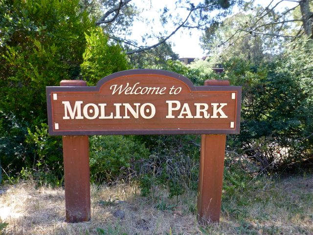 """Wooden sign: """"Welcome to Molino Park"""""""