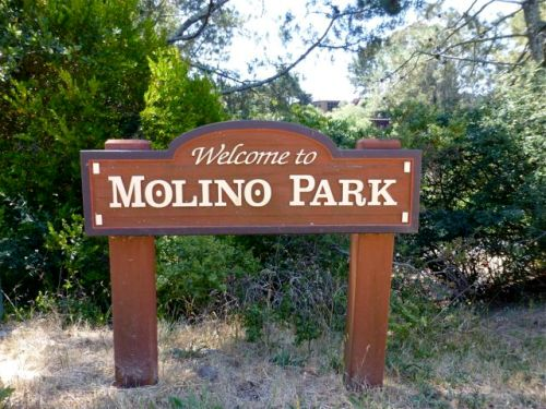 "Wooden sign: ""Welcome to Molino Park"""