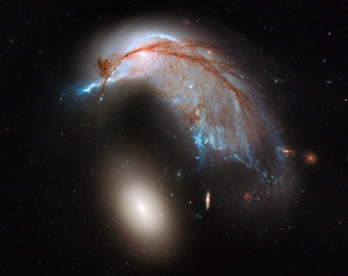 Hubble image looks like the profile of a hummingbird