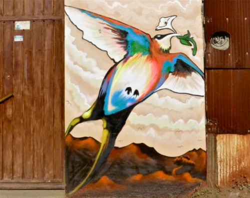 bird painted on wall of building
