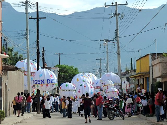 Contact Us | Ecojardín-UNAM | & Quot; A Window Toward Sustainability & quot;