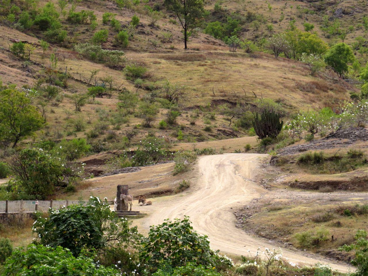 Dirt crossroads