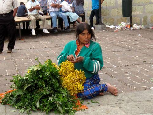 Woman herb vendor sitting on plaza ground