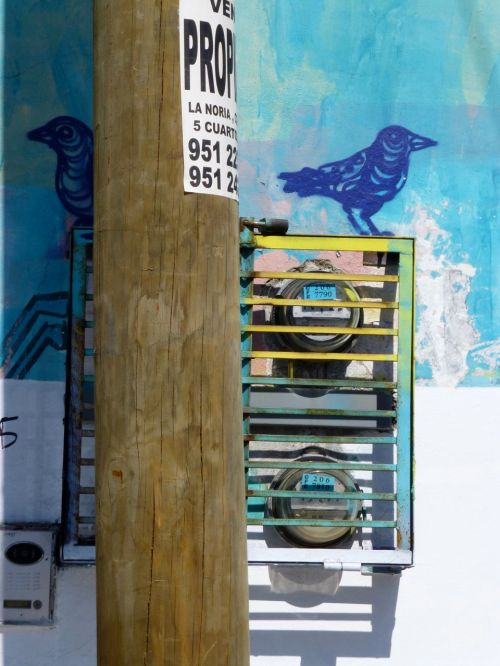 On top of an meter box, a painted bluebird