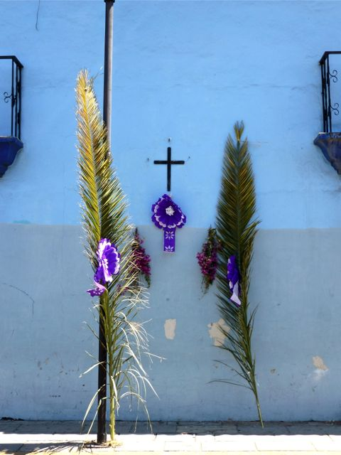 Palm fronds and cross against blue wall