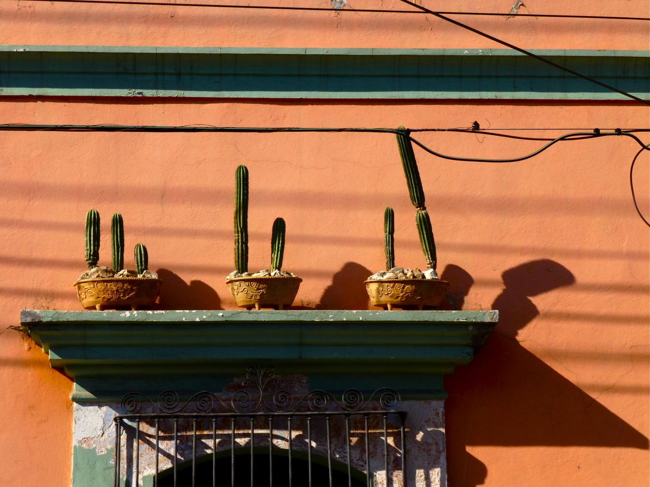 shadows from cactus & portico on orange wall