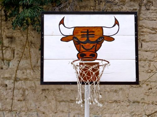 Face of bull painted on backboard of basketball hoop
