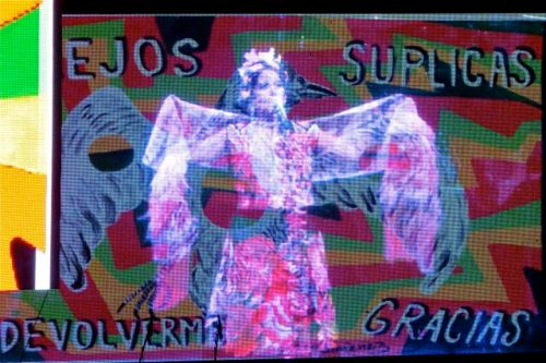 Projected image of Lila Downs