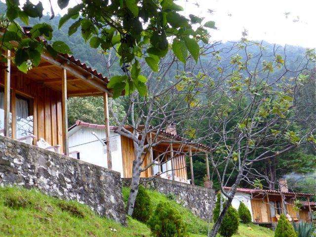 3 cabañas and trees