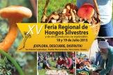 15 feria regional de los hongos silvestres en cuajimoloya oaxaca