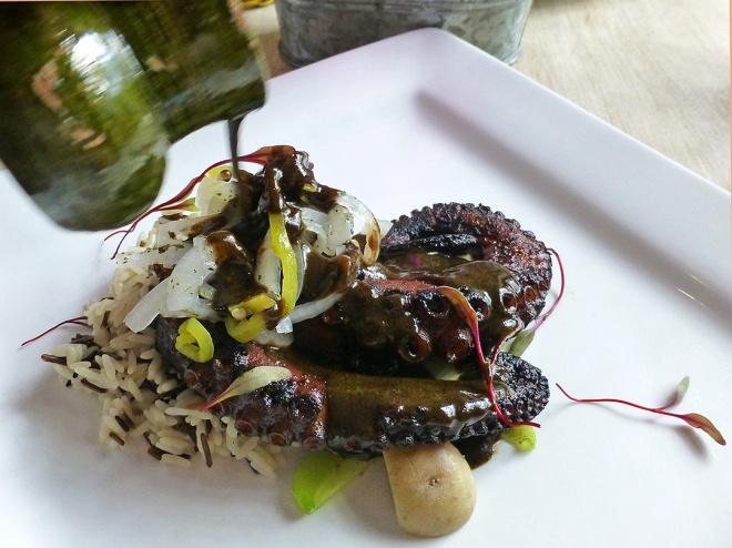 Chichilo servido con pulpo y arroz (Chichilo mole served with octopus and rice)