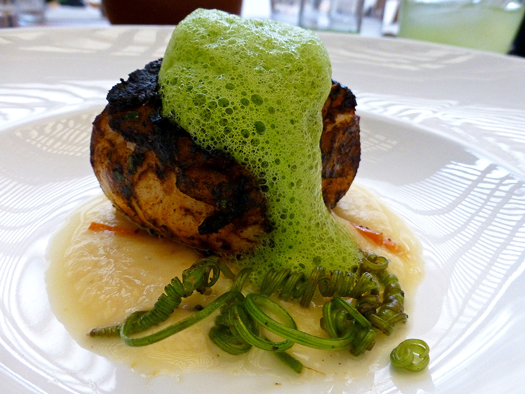 Robálo al pastor con chichilo negro (Sea bass with chichilo mole)