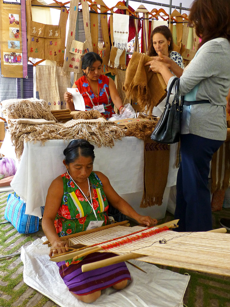 Weaver from the Katyi Ya'a Taller Colectivo de Algodón Native (Collective workshop using native cottons)