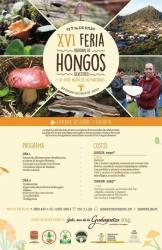 feria de los hongos silvestres 2016