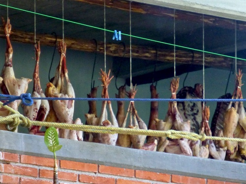 Poultry hanging around, awaiting their turn