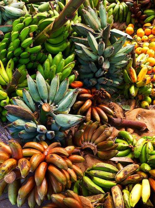 A variety of bananas at a market
