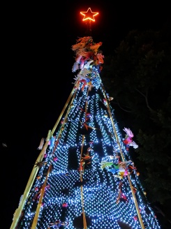 Christmas tree on the Alameda in Oaxaca city