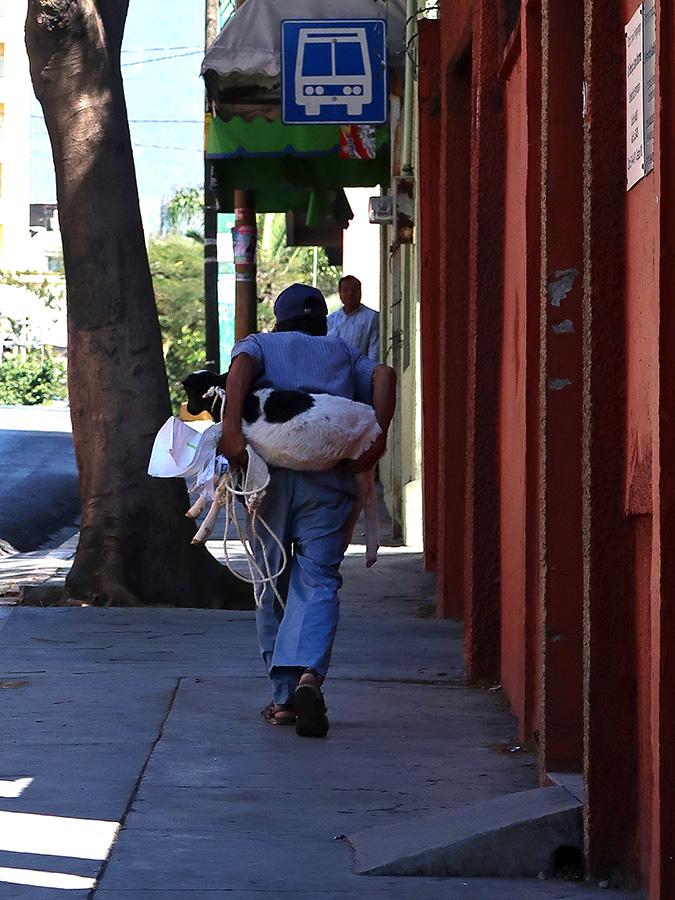 Oaxaca On Wheels Food Truck