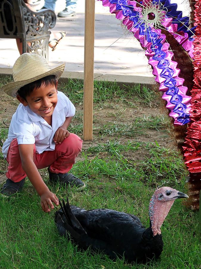 boy and turkey