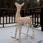 Lighted reindeer in snow